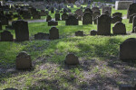 Rows of Shouldered Tablet Headstones in a Cemetery