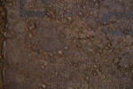 Rust-Stained Pavement