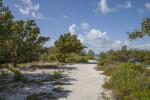 Sand Trail Leading to Atlantic Ocean