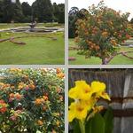 Schönbrunn Palace & Gardens photographs
