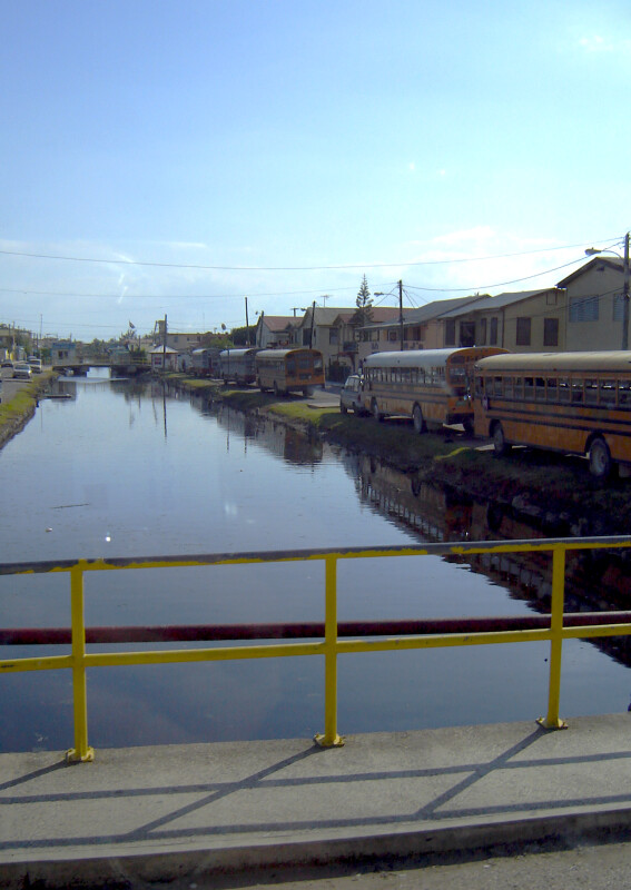 School Buses Along the River