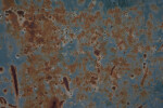 Scratched, Rusted Blue Paint