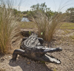 Sculpture of American Alligator with Open Mouth