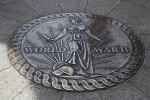 Seal in Granite