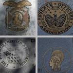 Seals photographs