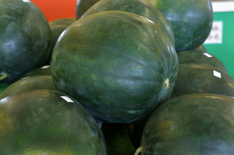 "Seedless Florida ""Sugar Baby"" Watermelons"