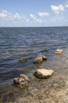 Several Rocks Near the Shore at Biscayne National Park