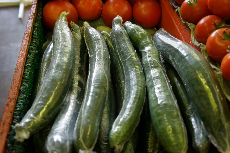 Several Seedless Cucumbers