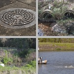 Sewage and Water Treatment photographs