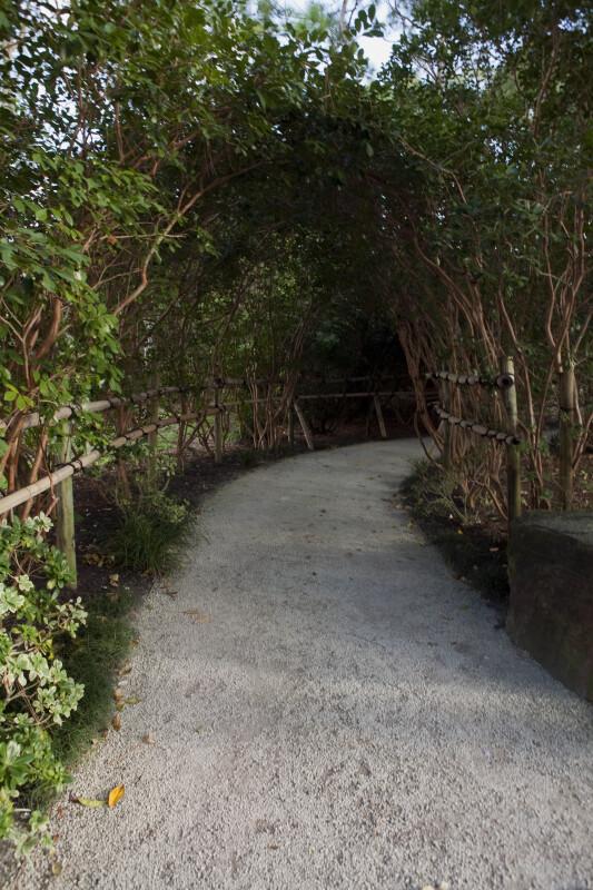 Shaded Walkway