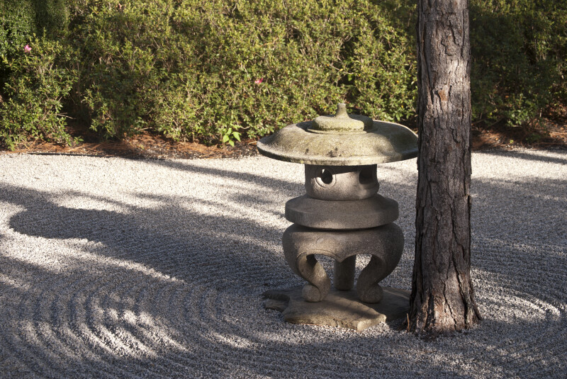 Shadows Casted Upon Trunk of Pine Tree and Small, Stone Sculpture