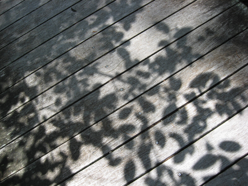 Shadows on Boardwalk