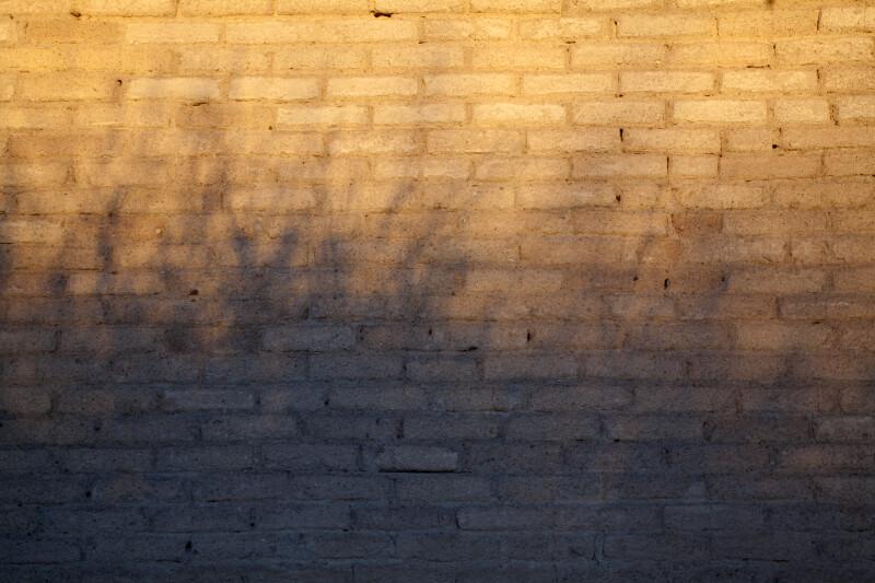 Shadows on the Brick Wall