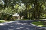 Shady Pavilion