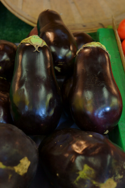 Shiny, Dark Purple Eggplant