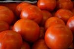 "Shiny, Red Vine Ripe ""Beefstake"" Tomatoes"