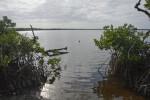 Shore of Bear Lake