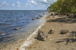 Shoreline at Biscayne National Park