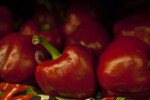 Side View of Red Bell Pepper