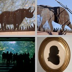 Silhouettes photographs