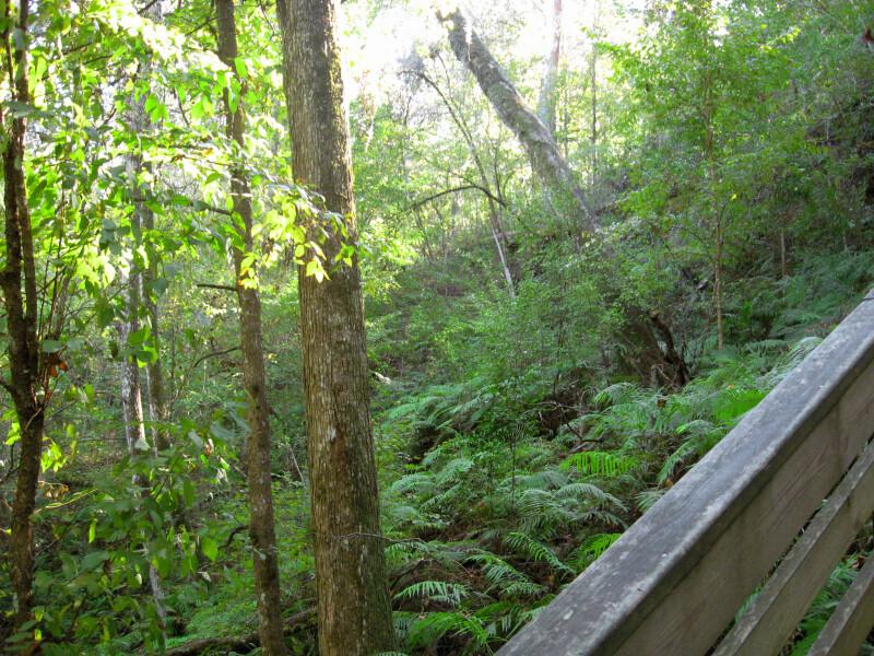 Sinkhole Slope