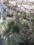 Sinkhole Wall