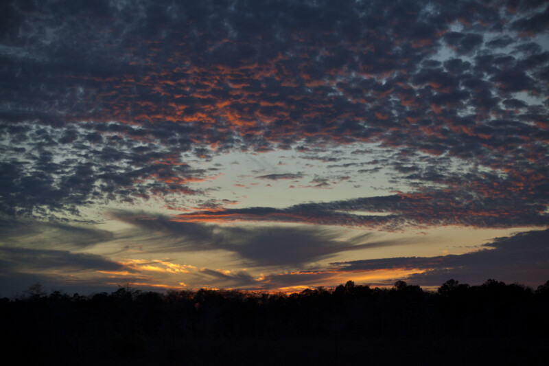 Sky Above Kirby Storter Park of Big Cypress National Preserve at Sunset
