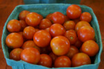 Small, Blue Container Full of Cherry Tomatoes