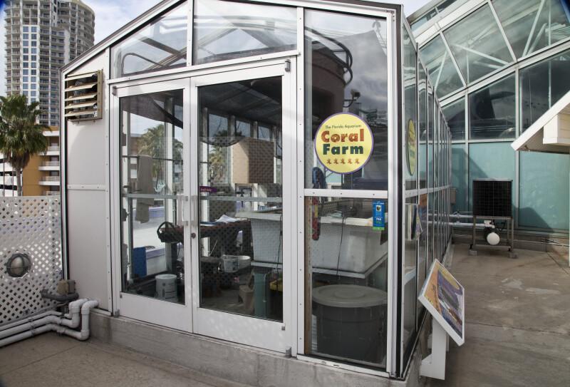 Small, Glass Building at The Florida Aquarium