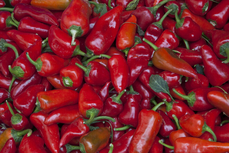 Small, Red Chilies