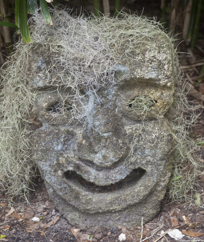 Small Sculpture of Face Covered in Spanish Moss