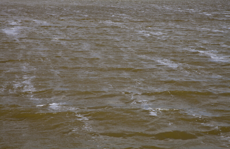 Small Waves at West Lake of Everglades National Park