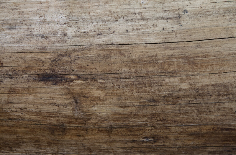 Smooth Wood with Longitudinal Cracks