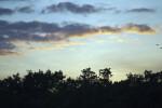 Snake Bight Trail Sunset