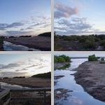 Snake Bight Trail photographs