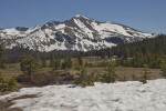Snow on the Meadow and Snow on the Mountain