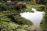 Spade-Shaped Pond