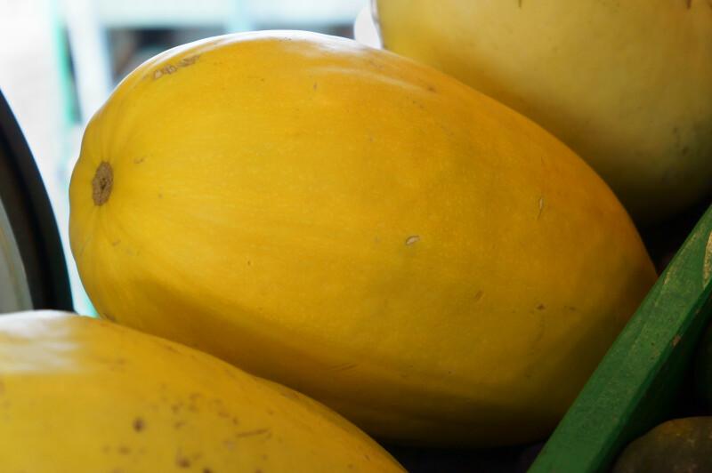Spaghetti Squash Close-Up