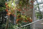 Spiral Staircase at Palmenhaus