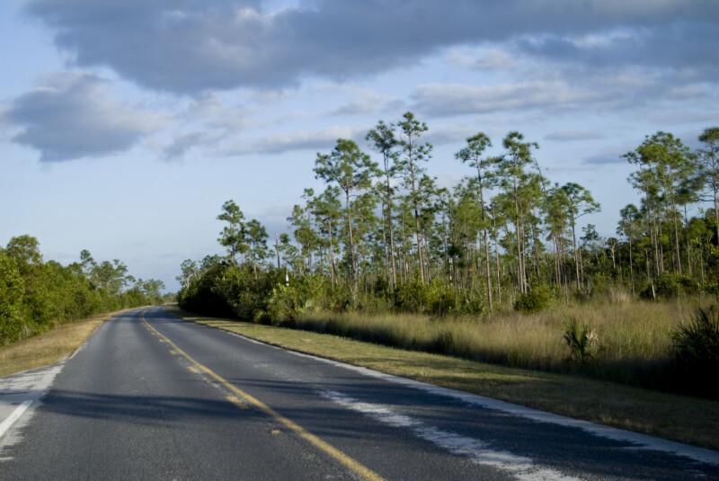 SR 9336 Bend