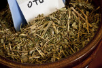 Stinging Nettle Herb