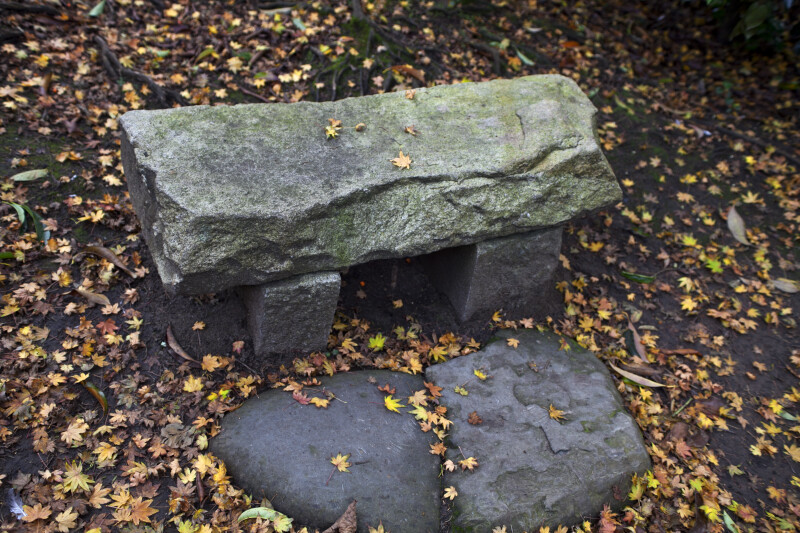 Stone Bench and Fallen Maple Leaves