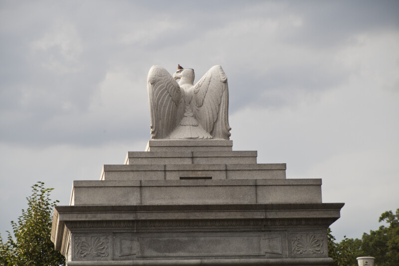 Stone Eagle and Pigeon