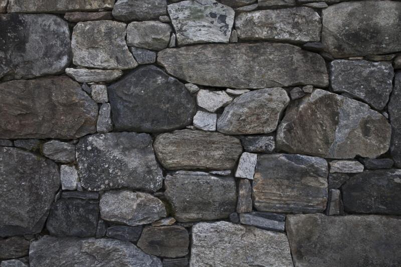 Stone Wall  at the Arnold Arboretum of Harvard University