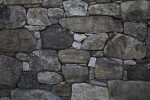 Stone Wall  at the Arnold Arboretum of Harvard University