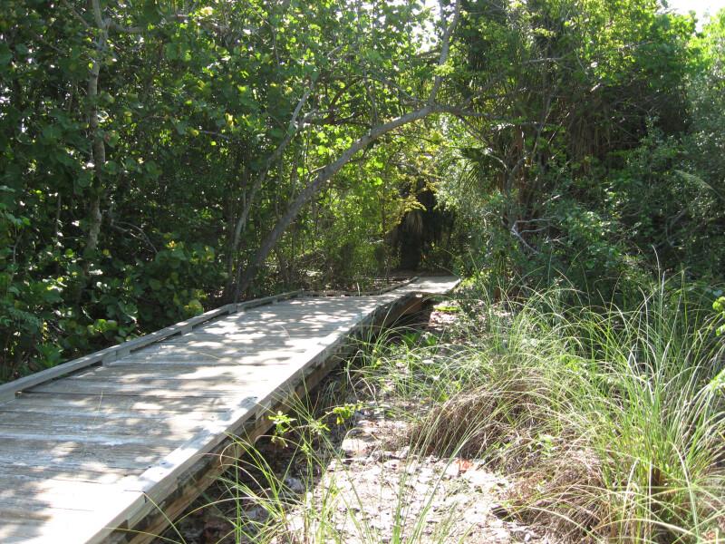 Straight Boardwalk