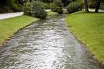 Stream at Englischer Garten