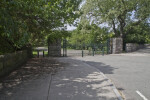 Street at The Arnold Arboretum of Harvard University
