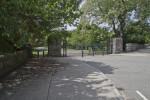 Street at The Arnold Arboretum of Harvard University
