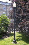 Streetlight Near a Purple-Leaved Tree at the Boston Public Garden